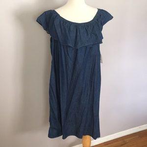 Cute Denim 1x-2x Off shoulder plus size dress